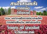 รายงานข่าวสุขภาวะ ภาคเหนือ สานใจสานพลัง 4 กันยายน 2561 ตอน มหกรรมเชียงรายเมืองสมุนไพรการแพทย์พื้ นบ้าน แพทย์แผนไทย : สุนี บุญอนันต์