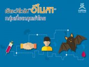 เฝ้าระวังไวรัส'อีโบลา'กลุ่มเสี่ยงหลุดเข้าไทย