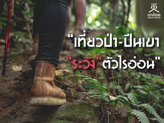 'เที่ยวป่า-ปีนเขา'ระวัง'ตัวไรอ่อน'
