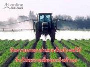 อันตรายจากยาฆ่าแมลงในผัก-ผลไม้ ล้างไม่สะอาดเสี่ยงมะเร็งเต้านม